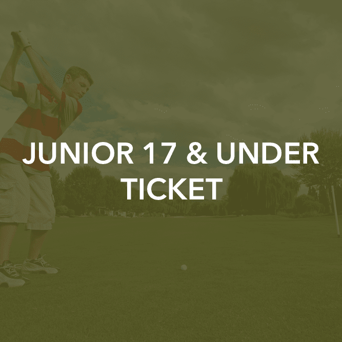 Junior 17 & Under Ticket
